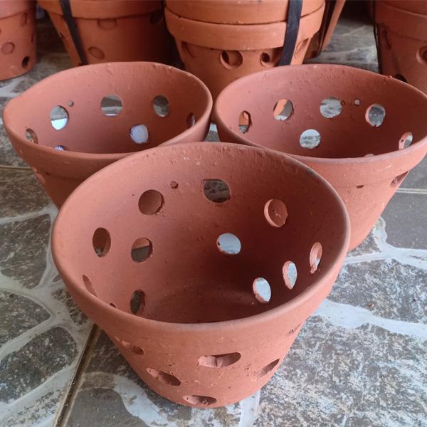 Sử dụng chậu bằng đất nung thì cần rửa sạch rồi ngâm với nước để đạt độ ẩm tốt