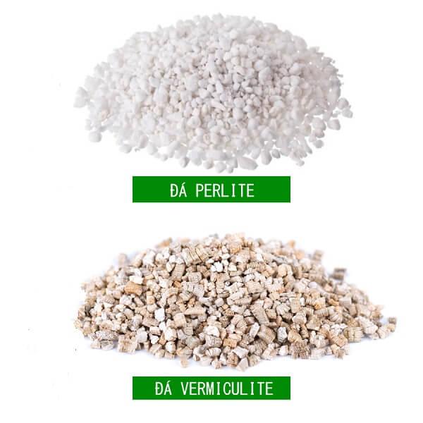Những trường hợp nên sử dụng đá Vermiculite và Perlite