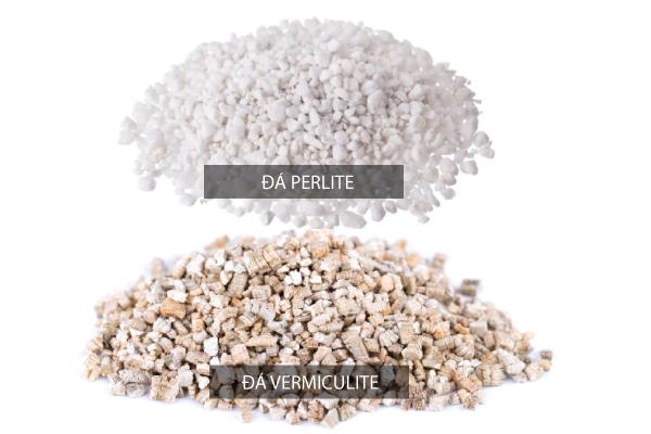 đá perlite và đá vermiculite
