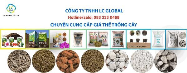 LC Global chuyên cung cấp nhiều loại đá khác nhau để trồng cây