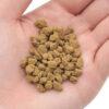 Viên đất nung là gì? Lợi ích trồng cây bằng đất sét nung Akadama Nhật Bản